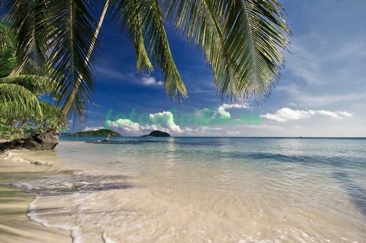 Фотообои Берег моря 3Д