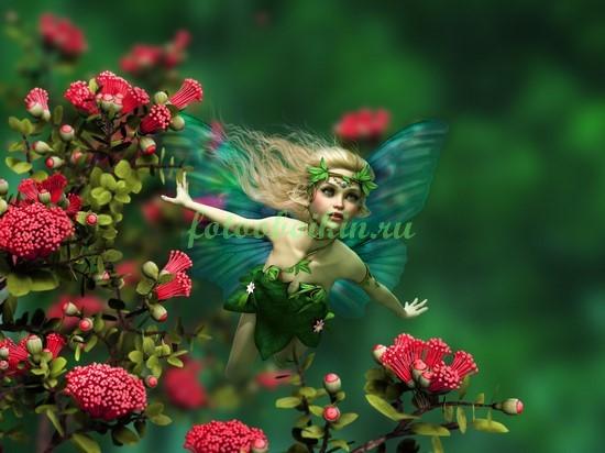 Фотообои Фея летит над цветами