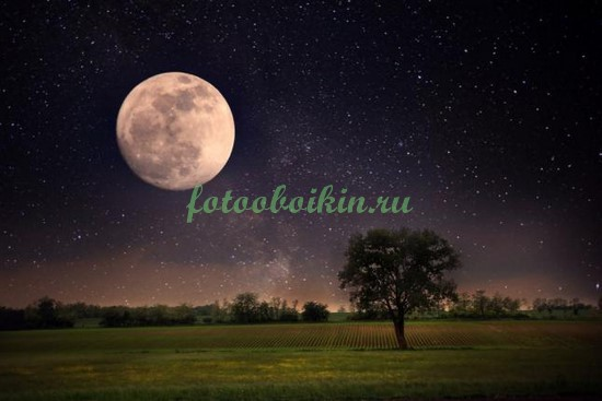 Фотообои Луна и звезды