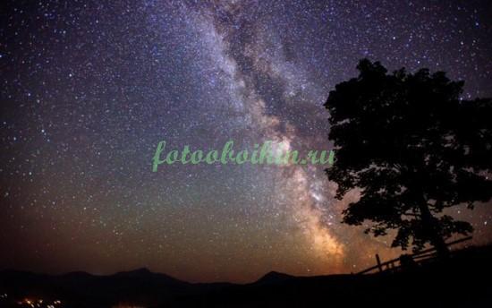Фотообои Звездное небо в степи