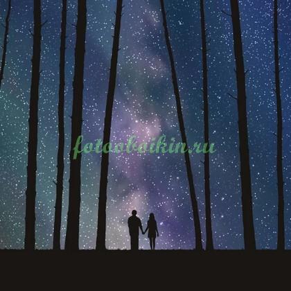 Фотообои Звездное небо в лесу