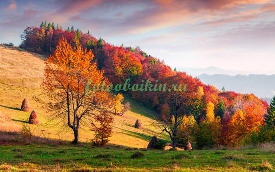 Фотообои Осень в Австрии