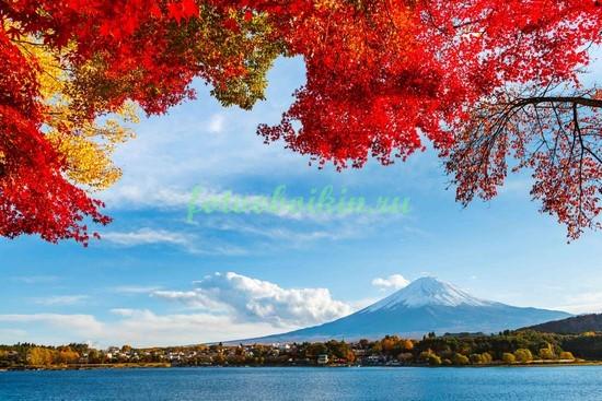 Фотообои Осень в Японии