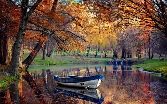 Фотообои Лодочка в парке