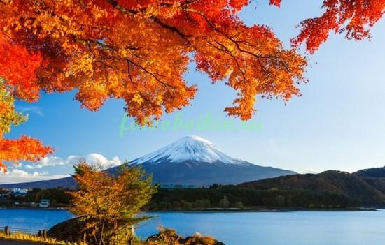 Фотообои Япония осенью