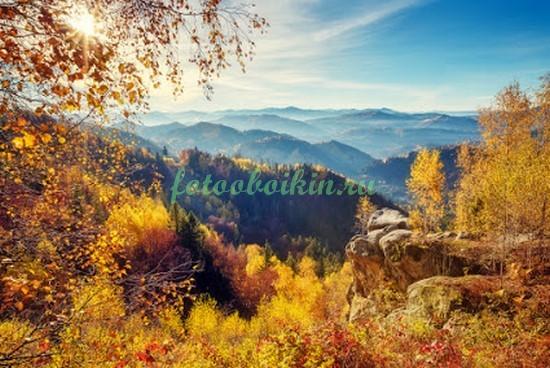 Фотообои Желтые деревья в горах