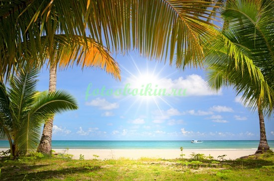 Фотообои Солнце на пляже