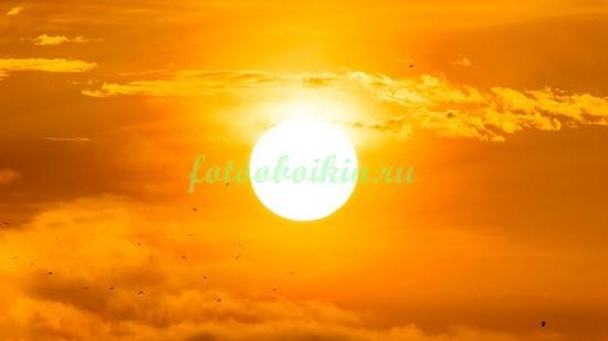 Фотообои Солнце на закате