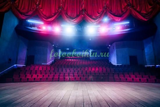 Фотообои Концертный зал