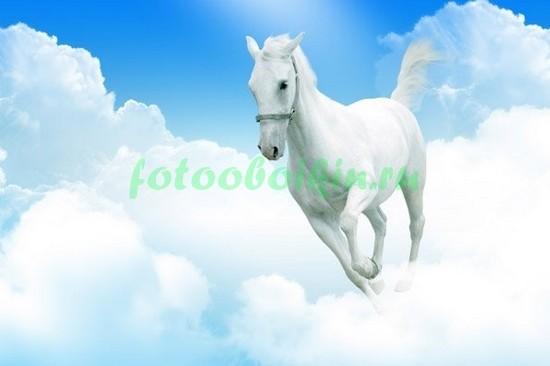 Белая лошадь на облаках