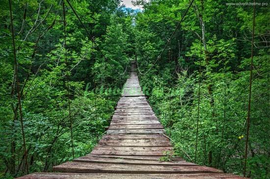 Фотообои Деревянный мостик