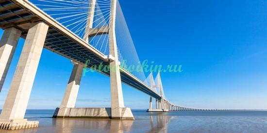 Фотообои Под мостом