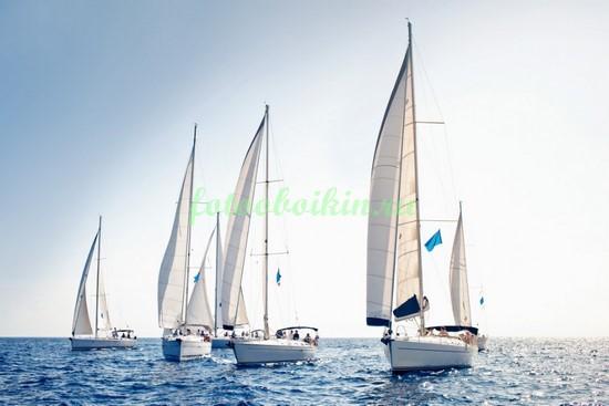 Фотообои Яхты