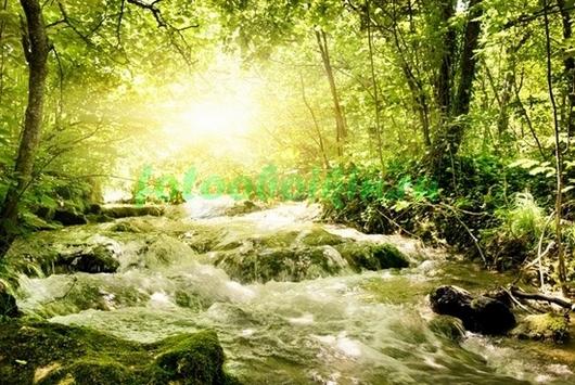 Фотообои Горная речка