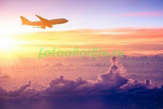 Фотообои Самолет в небе