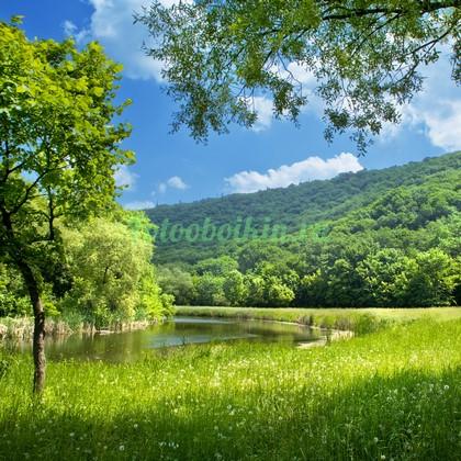 Фотообои Поле в холмах