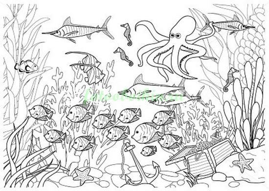 Фотообои Подводное царство