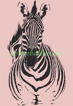 Фотообои Зебра на розовом фоне