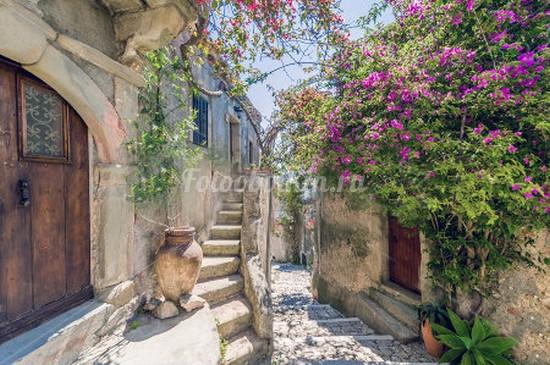 Фотообои Тихая улочка с цветами