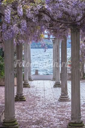 Фотообои Арка в цветах с видом на море