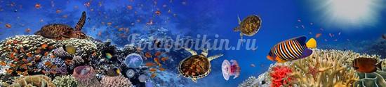 Фотообои Панорама рыбки под водой