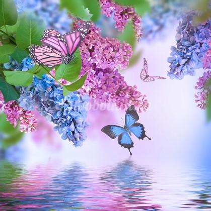 Сирень и бабочки