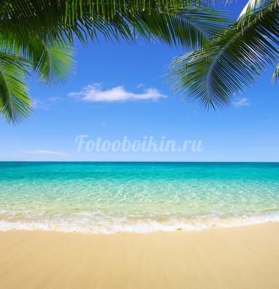 Уютный пляж с голубым морем