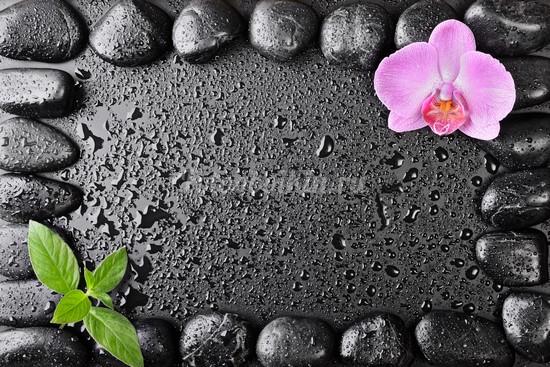 Фотообои Камни базальта и орхидея