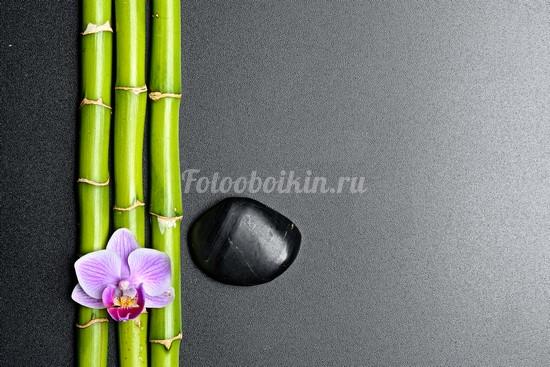 Фотообои Бамбук и орхидея
