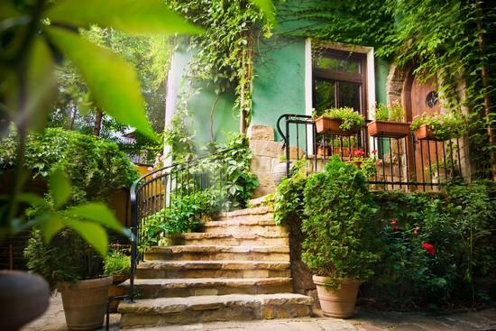 Фотообои Солнечный зеленый дворик
