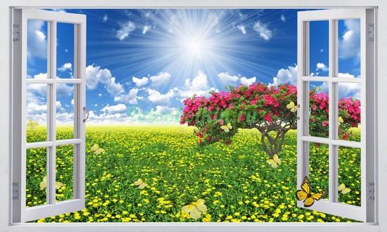 Фотообои Окно на полянку