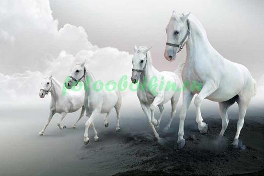 Фотообои Белые лошади на скаку