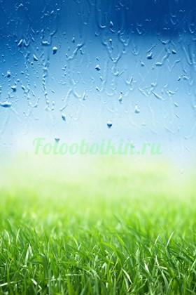Фотообои Яркая трава с каплями утренней росы