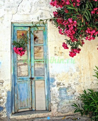 Фотообои Двери с цветами во дворе