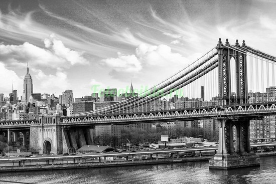 Фотообои Бруклинский мост в серых оттенках