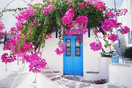 Фотообои Синяя дверь в цветах