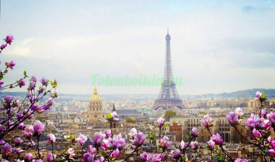 Фотообои Магнолии на фоне Эйфелевой башни