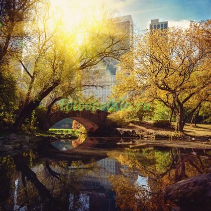 Фотообои Мостик в парке