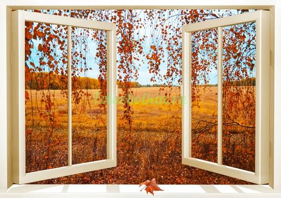 Фотообои Осень в окне