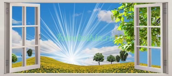 Фотообои Яркое солнце в поле