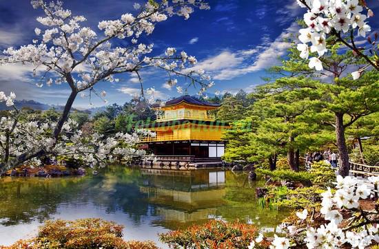 Фотообои Дворец на берегу озера