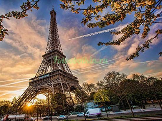 Фотообои Эйфелева башня у дороги