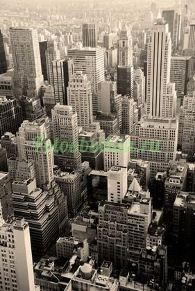 Фотообои Множество небоскребов