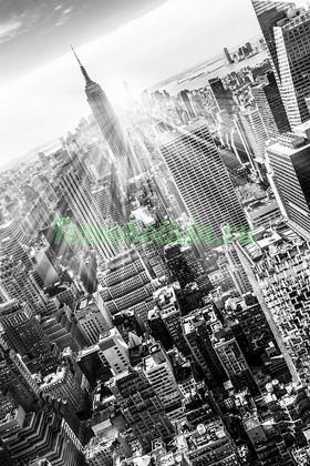 Фотообои Лучи солнца за небоскребом