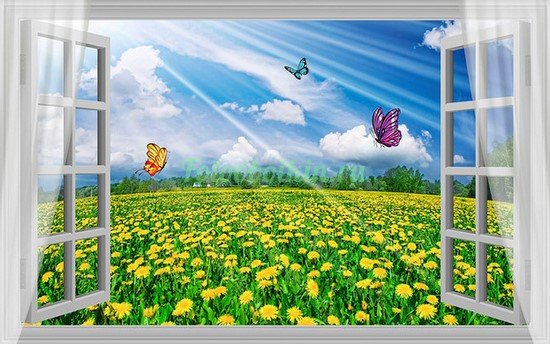 Фотообои Окно с бабочками