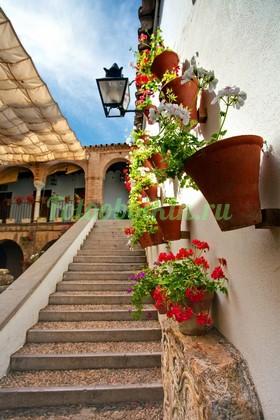 Фотообои Лестница вверх к двери