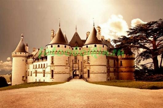 Фотообои Замок Шомон-сюр-Луар