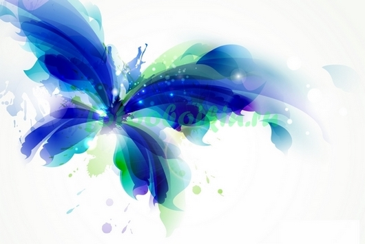 Фотообои Синяя бабочка