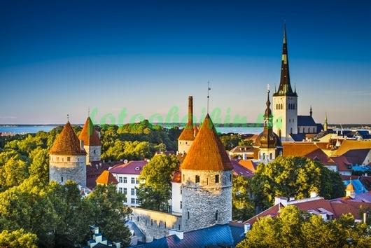 Фотообои Замок в Эстонии