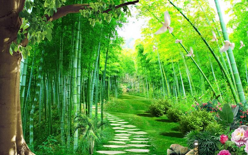 Фотообои Бамбуковые